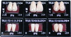 バイオブレンドIPN硬質レジン歯