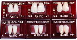 バイオブレンドレジン歯