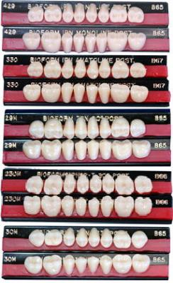 バイオフォームIPN硬質レジン臼歯